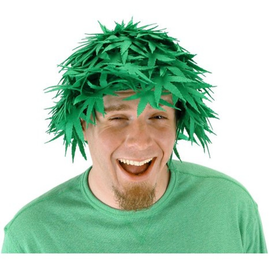 Pot Head Wig